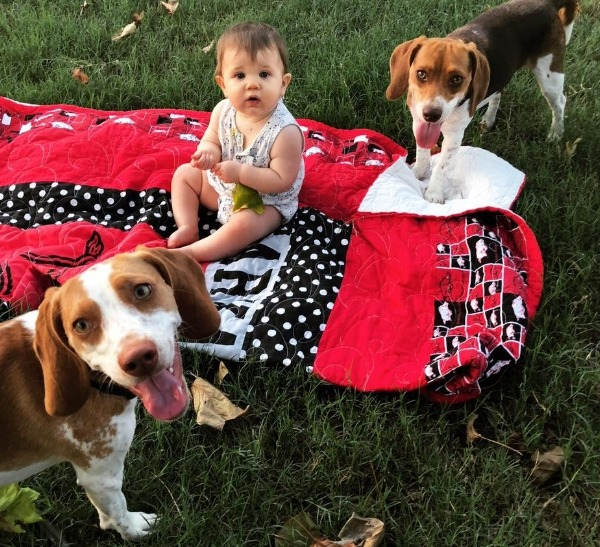 Backyard shenanigans with her SisterBeagles!